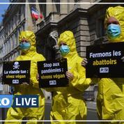Covid-19: l'association Peta alerte sur les risques sanitaires dans les abattoirs