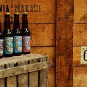 Ski : Sélection de bières de montagne pour trinquer sur les sommets !