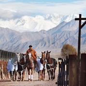 En Argentine, vendanges-vacances au pied des Andes pour quelques Français