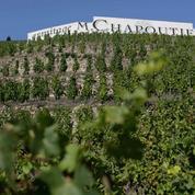 Les vins de la Vallée du Rhône veulent s'exporter au-delà de l'Europe