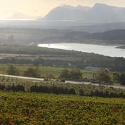 Ntsiki Biyela bouscule le petit monde du vin sud-africain