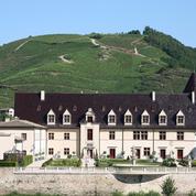 Vol de raisins : 40.000 euros dérobés dans une vigne de Condrieu