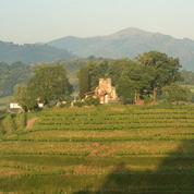 Au Pays Basque français, des jarres en terre cuite pour élever le vin