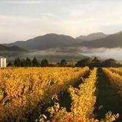 Chanel rachète un vignoble de la Napa Valley en Californie
