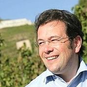 Vins de la Vallée du Rhône: les professionnels vantent un millésime 2016