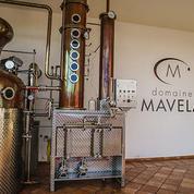 Fête des pères : 4 visites de distilleries à leur offrir !