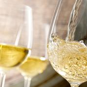 Les catégories de vin : qu'est-ce qu'un vin de pays ?