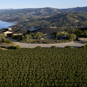 LVMH achète Colgin Cellars, un des domaines californiens les plus en vue