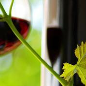 Fête des pères : 8 idées cadeaux autour du vin pour vos papas
