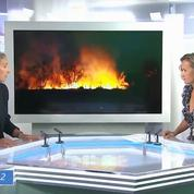 Amazonie : «Il y a à la tête du Brésil un destructeur en chef» estime Delphine Batho