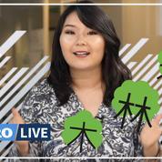 Apprendre les bases du japonais : les kanjis (3/6)