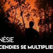 Indonésie : les feux de forêts se multiplient