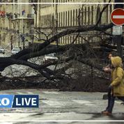 En 1999, les tempêtes Lothar et Martin dévastaient la France
