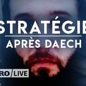 Djihadistes en prison: comment préparent-ils l'après Daech?