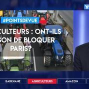 Agriculteurs : ont-ils raison de bloquer Paris ?