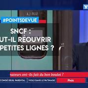 SNCF: faut-il réouvrir les petites lignes?