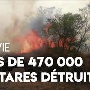 471 000 hectares détruits par des incendies en Bolivie