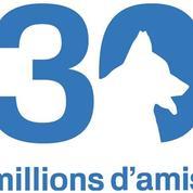 France 3 : «30 millions d'amis est désuet et dépassé»