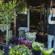 TF1 prépare un concours de fleuristes