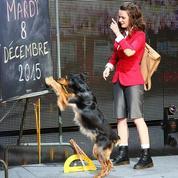 La France a un incroyable talent : Juliette va partager ses gains avec Naestro