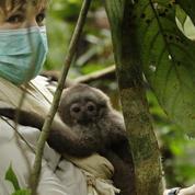 Véronique Jannot au chevet des espèces menacées sur France 3