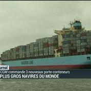 Les plus gros navires du monde