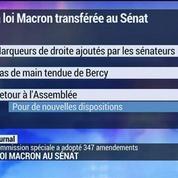 La loi Macron au Sénat