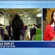 Suppressions d'Intercités: On a organisé la désaffection de ces lignes estime Duflot