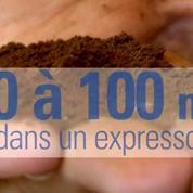 Pour votre santé, ne buvez pas trop de cafés