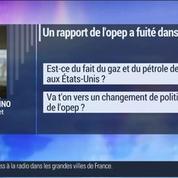 Marc Fiorentino: OPEP: Le pétrole à 100 dollars le baril, c'est fini?