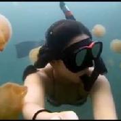 Elle nage dans un lac rempli de méduses oranges
