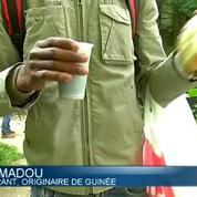 Délogés par les autorités, les migrants s'installent dans un bois parisien