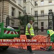 Les buralistes déversent 4 tonnes de carottes devant le PS