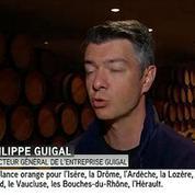 40 000 euros de raisin dérobés dans le Rhône