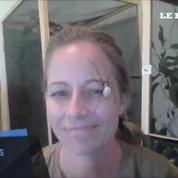 Etats-Unis : bons baisers d'une Nephila Clavipes, l'araignée à la toile d'or