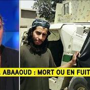 Abdelhamid Abaaoud: mort ou en fuite?