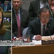 L'ONU adopte une résolution soutenant un plan de paix en Syrie