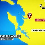 Accident mortel à Rochefort: un minibus scolaire percute un poids lourd