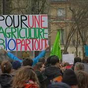 Marche verte de 250 manifestants contre les pesticides à Paris
