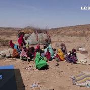 La Somalie touchée par une très forte sécheresse