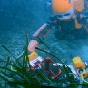 Ocean One, le robot humanoïde qui explore les fonds marins