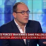 Irak : Les forces armées irakiennes sont entrées dans Falloujah