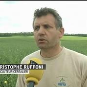 Glyphosate : quelles solutions pour les agriculteurs en cas d'interdiction