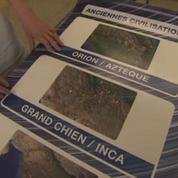 Un Canadien de 15 ans aurait découvert une nouvelle cité maya