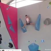 Spider-man existe, et il grimpe vraiment comme une araignée