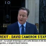 David Cameron: «Il faut respecter le choix des Britanniques»