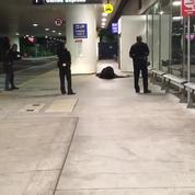 Fausse alerte à l'aéroport de Los Angeles: la police arrête un homme déguisé en Zorro