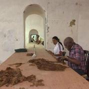 Un Cubain tente de battre le record du plus long cigare au monde
