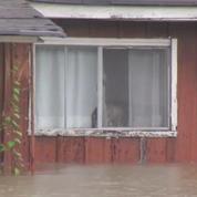 Inondations en Louisiane : une amélioration attendue mercredi