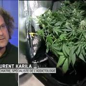 Rapport sur le cannabis: la contraventionnalisation est archaïque